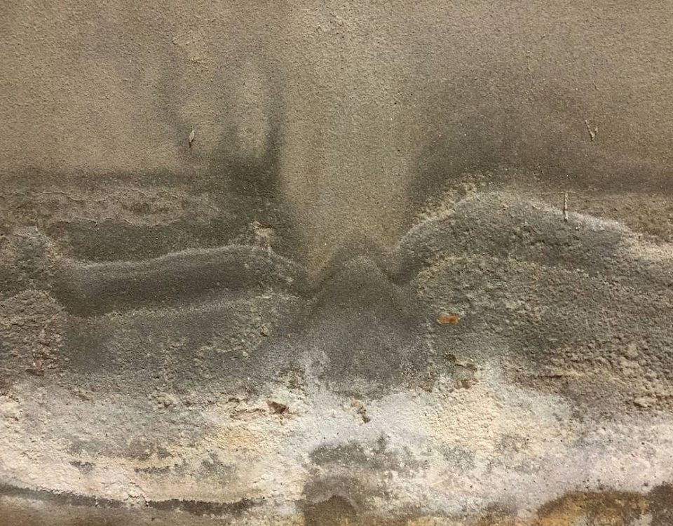 what is efflorescence